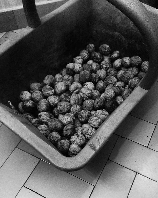 7 jours, 7 photos en noir et blanc de ma vie.