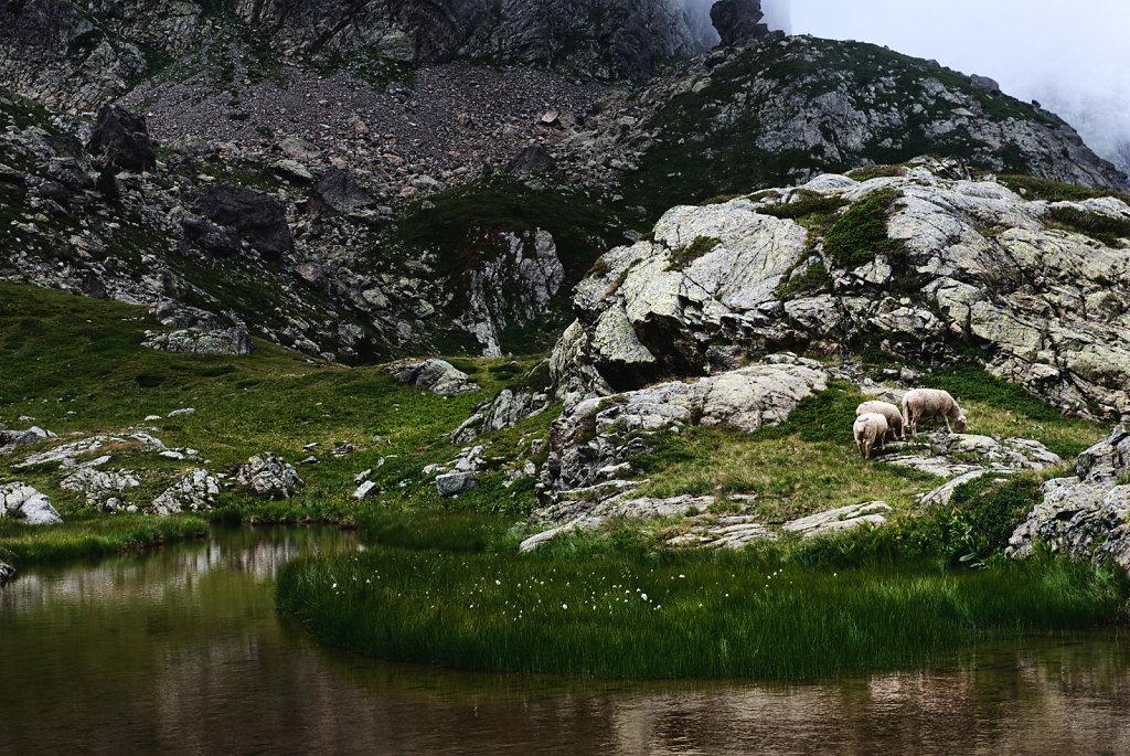 Lac du Crozet et lac du Doménon